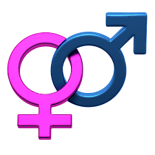 Gender Issues and Development